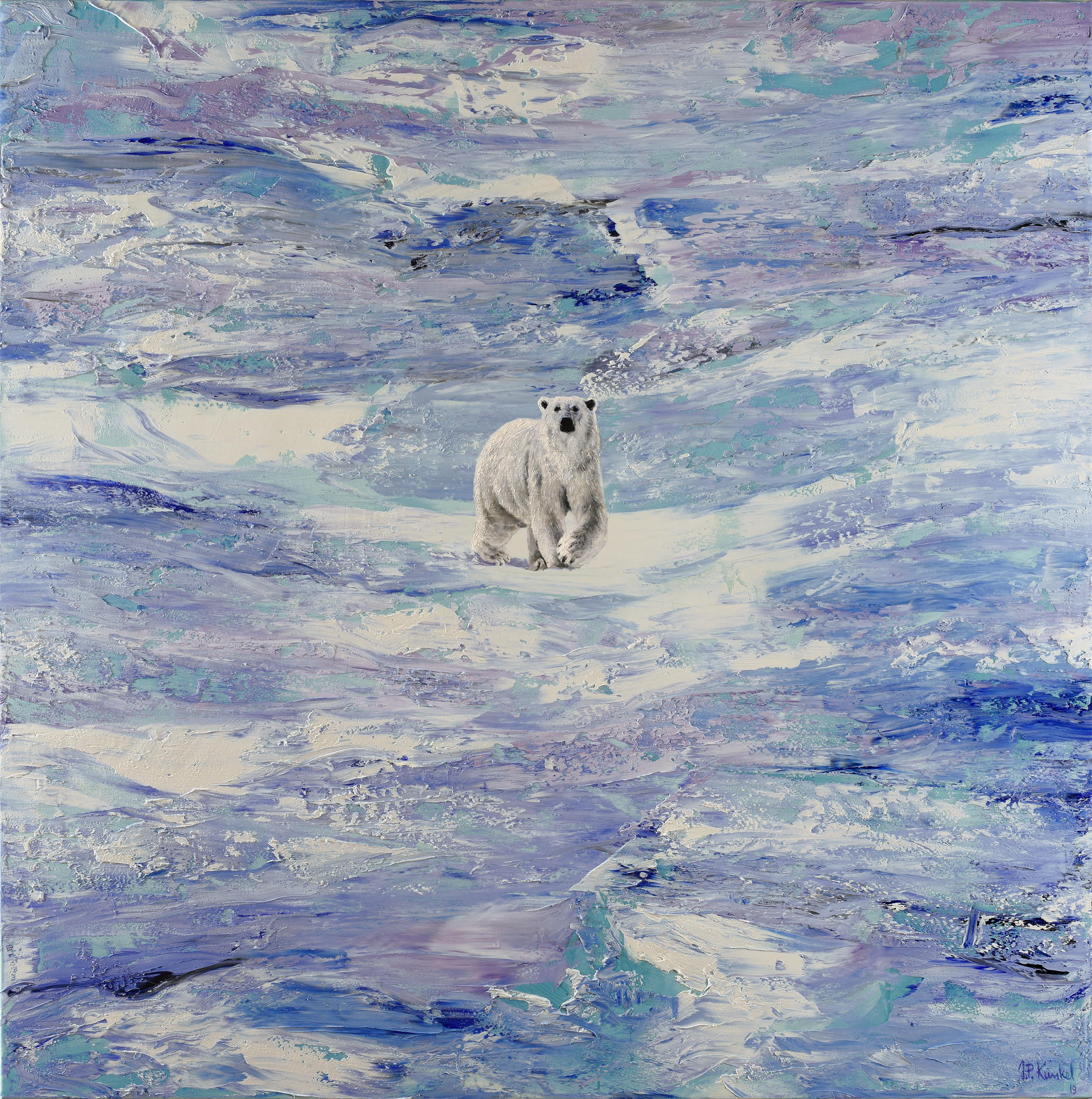 Polar Bear - Eisbär