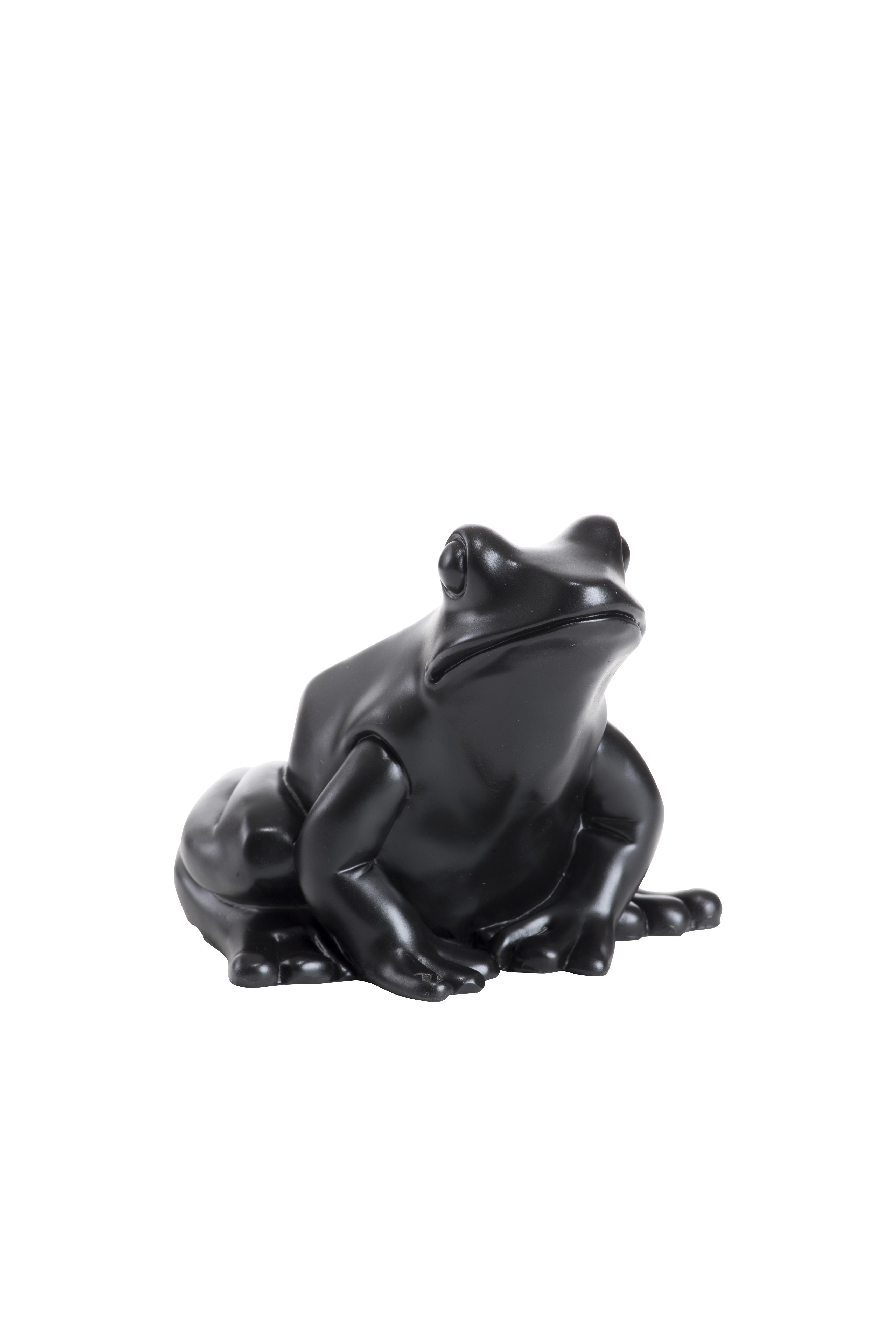 Froschkönig, schwarz
